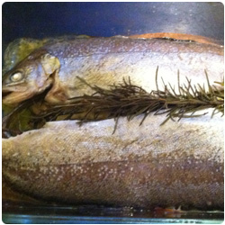Oven Trouts - The International Cooking blog
